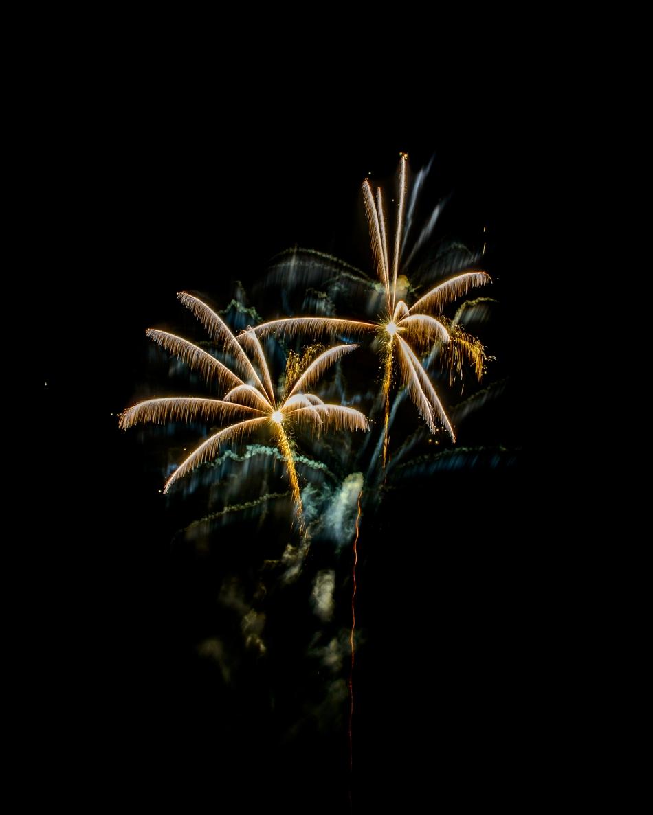 Fireworks 2015-0461
