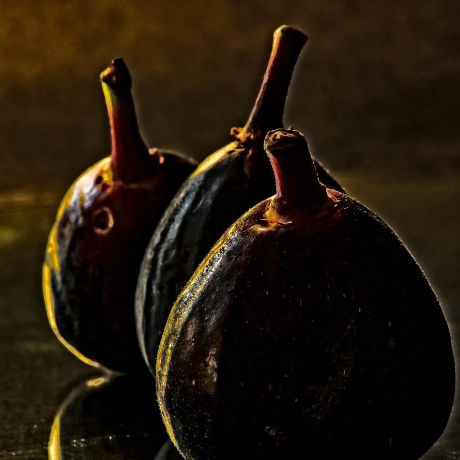 Black Fig-4180-Edit