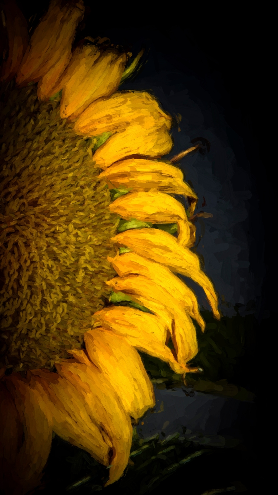 CEzanne Sunflower.jpg
