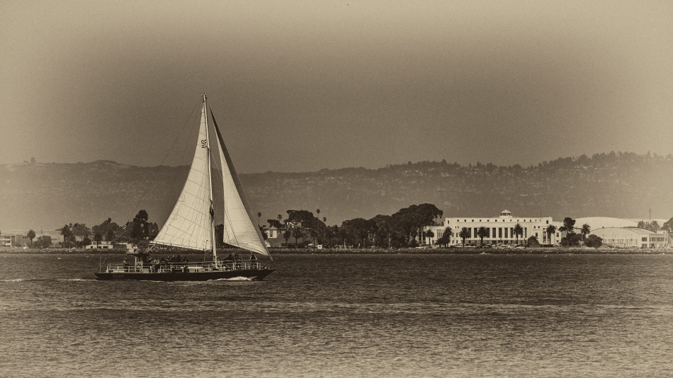 Sailing on SF Bay.jpg