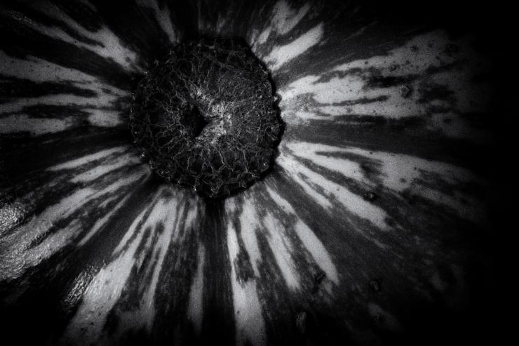 noir gourd 1.jpg