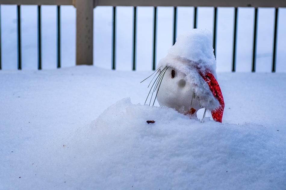 Frosty the snowman.jpg