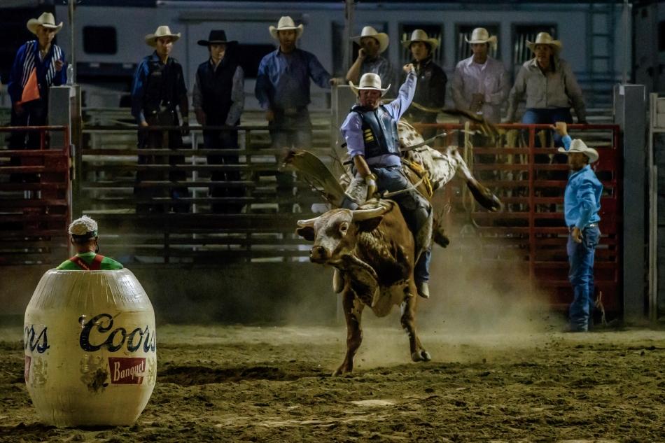Bull Rider Yeehaw