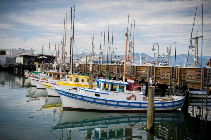 Fisherman's Wharf.jpg