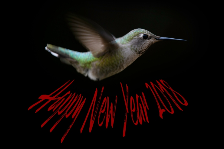Happy New Year Hummer.jpg