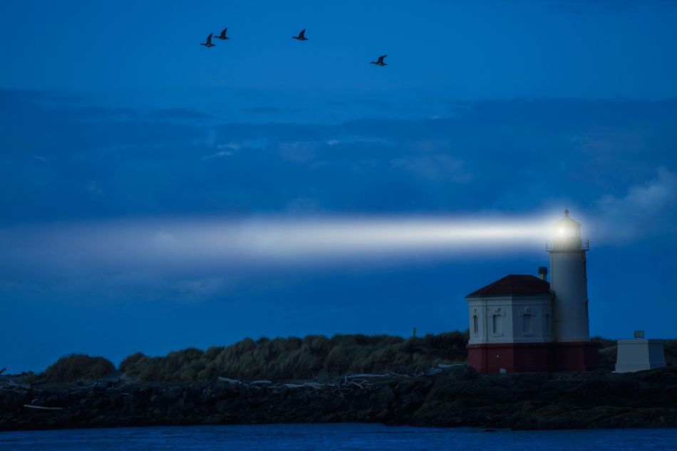 Lighthouse Beam with birds