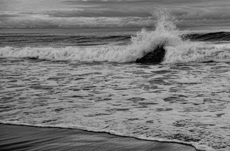 LA-CA-OR Coast-001.jpg