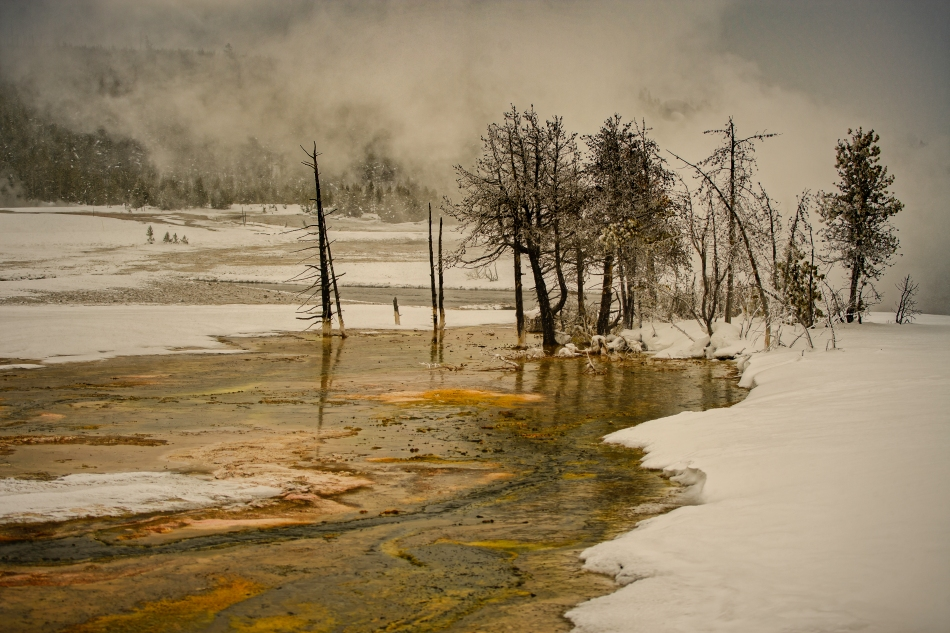 Yellowstone Day 4    194451-1.jpg