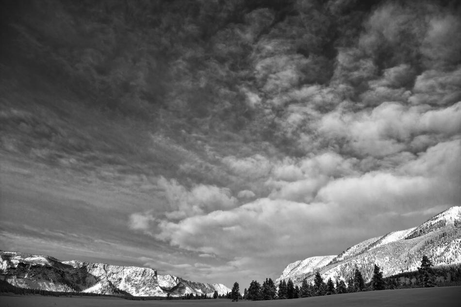 Yellowstone Day 2    189369-1.jpg
