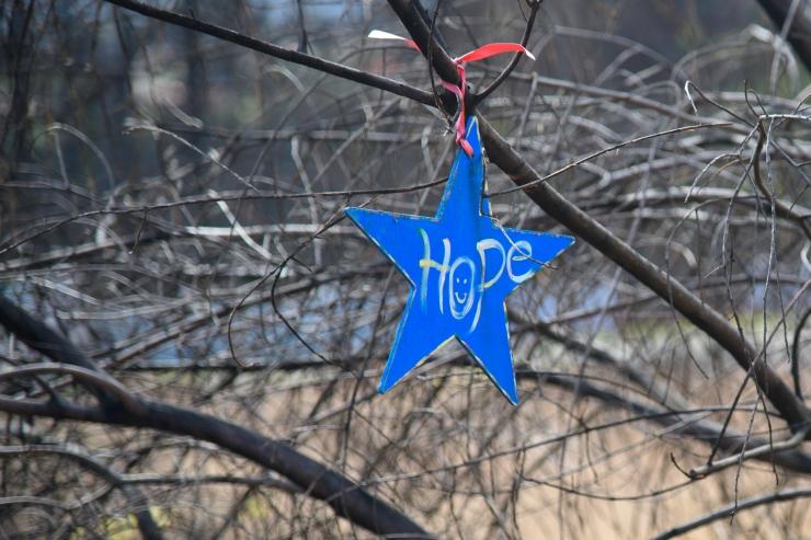 Stars of Hope 5