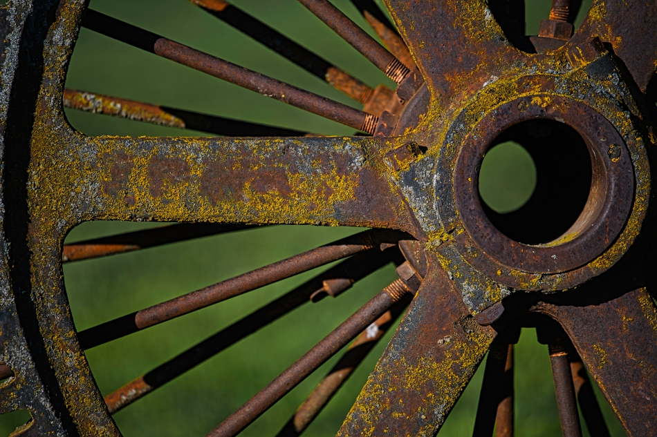 rusted lichen wheel palouse