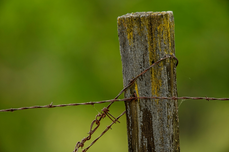 post and barbed wire.jpg