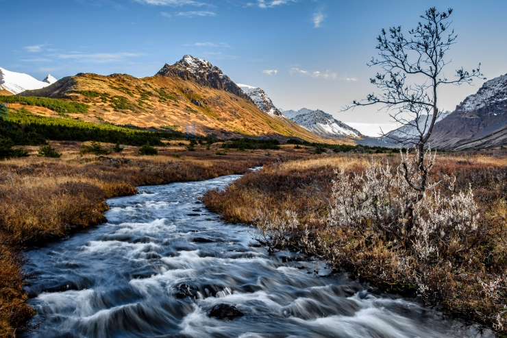 Alaska Day 3 2277-1.jpg
